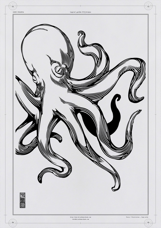 019 Octopus