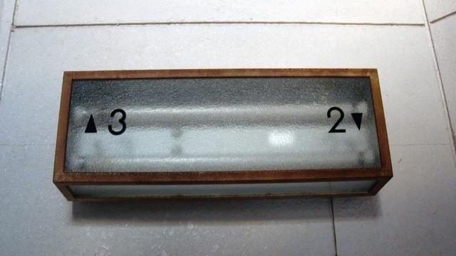 006 市川動植物園