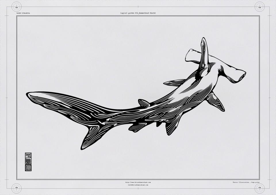 032 Hammerhead_Shark2